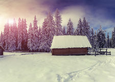 Old farm in the Carpathian mountains Stock Image