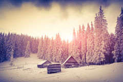 Old farm in the Carpathian mountains. Stock Images