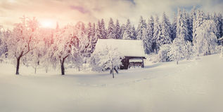 Old farm in the Carpathian mountains. Sunny winter morning. Stock Photo