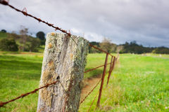 Old farm fence. Royalty Free Stock Photo