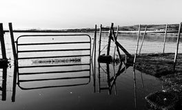 Old Farm Gate. Farm Gate on farm during winter fload in black and white Royalty Free Stock Image