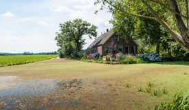 Old farm house in a Dutch polder landscape Stock Images