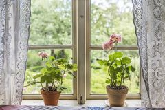 Old farm house window with lace curtains stock photos