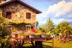 Ancient farm with flowers Royalty Free Stock Images