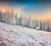 Old farm in the mountains. Colorful winter morning. Retro style Stock Photography