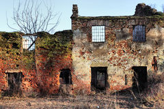 Old farm ruin Royalty Free Stock Image
