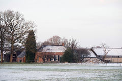 Old farm surrounded by bare trees in winter rural landscape. Stock Photos