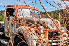 Old Farm Truck on a Dirt Road. Found in Ida Valley, New Zealand Royalty Free Stock Photo