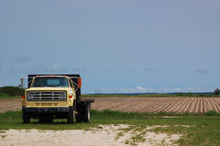 Old Farm Truck and Fallow Field Stock Image