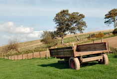Old farm wagon in meadow Royalty Free Stock Photography