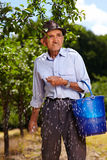 Old farmer fertilizing in an orchard Royalty Free Stock Image