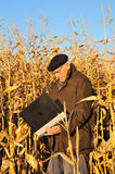 Old farmer in field Stock Image