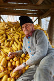 Old farmer in his maize barn Royalty Free Stock Photo