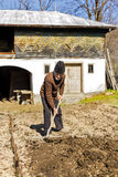Old farmer with rake working Royalty Free Stock Image