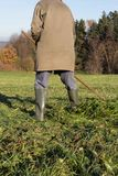 old farmer raking grass royalty free stock photography