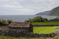 Old farmer's barn on the coastline of Azores Royalty Free Stock Photography