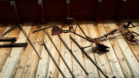 Old farmer tools on a wooden background. Different old rusty farmer tools on a wooden wall background stock photos