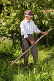 Old farmer using scythe to mow the grass Stock Photography
