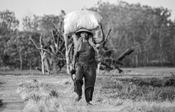 Old farmer Stock Photo