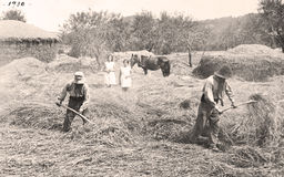 Old farmers Stock Image