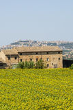 Old farmhouse and panorama of Osimo Royalty Free Stock Image