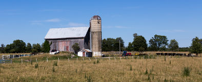 Old Farmhouse with silo. Old Farmhouse with silo, tractor and cows Stock Image