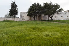 Old farmhouse Southern Italy. Old farmhouse south of Italy with grass circling the strong wind Royalty Free Stock Image