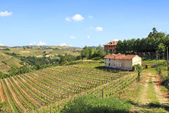 Old farmhouse and vineyards in northern Italy. Royalty Free Stock Image