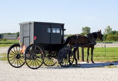Old fashioned Amish horse and buggy Stock Photos