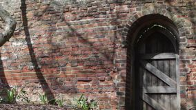 An old-fashioned arched wooden door in a brick wall in St Albans, UK. An old-fashioned arched wooden door in a brick wall, with shadows of wind blown branches in stock video footage