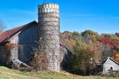 Silo with Vines Growing Up by Barn stock photo