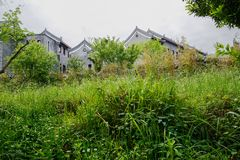 Old-fashioned buildings behind weeds in cloudy spring morning. Qingyan town,Guiyang,China royalty free stock photography