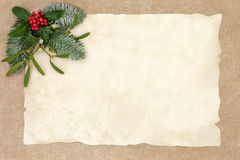 Old Fashioned Christmas Background. Old fashioned christmas abstract background border with flora of holly, ivy, mistletoe and snow covered fir on parchment over stock images