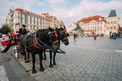 Old-fashioned Coach And Coachman At The Old Town Stock Image