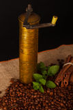 Old-fashioned coffee grinder. With cinnamon and mint Stock Image