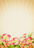 Old-fashioned Floral Background Stock Images