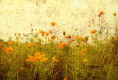Old-fashioned flower. Old-fashioned landscape in France Royalty Free Stock Photography