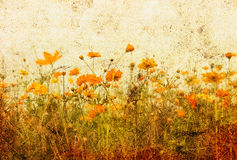 Old-fashioned flower. Old-fashioned landscape in France Royalty Free Stock Photo