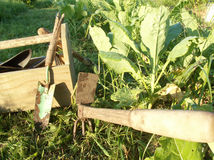 Old fashioned gardening tools. Wooden tool box with hand trowel and weeding tool Stock Images