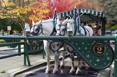 Old-fashioned horse-drawn vehicle Stock Image