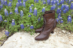 Old fashioned ladies' shoes with Texas bluebonnets Royalty Free Stock Image