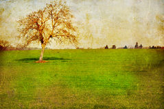 Old-fashioned landscape Royalty Free Stock Photography