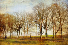Old-fashioned landscape Stock Image