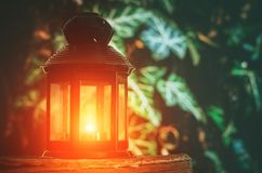 Old fashioned lantern on the book on ivy background. Old fashioned lantern on the book on green ivy background Royalty Free Stock Photography