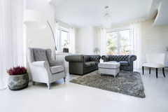 Old fashioned lather sofa in luxury drawing room. Lather sofa in luxury living room stock photos