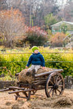 Old-fashioned little boy sitting at a vintage wooden carriage Stock Image