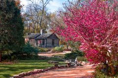 Log Cabin in the Woods with Red Leaves in Fall Stock Photo