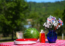Old Fashioned Picnic Stock Photos