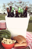 Old Fashioned Picnic Royalty Free Stock Photo