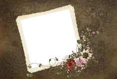 Old-fashioned snapshot frame Stock Images